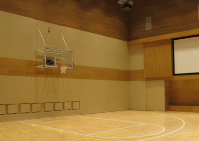 Terrains de basketball